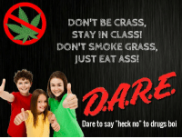 "Ass, Drugs, and Boi: DON'T BE CRASS,  STAY IN CLASS!  DON'T SMOKE GRASS,  JUST EAT ASS!  OARE  Dare to say ""heck no"" to drugs boi"