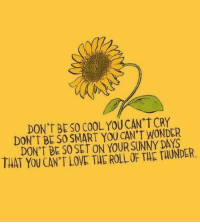 Love, Cool, and Wonder: DON't BE SO COOL YOU CAN CRY  DON T BE SO SMART YOU CAN'T WONDER  DON'T BE SO SET ON YOUR SUNNY DAYS  THAT YOU CAN'T LOVE THE ROLL OF THE TAUNDER