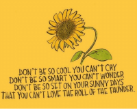 Love, Cool, and Wonder: DON'T BE SO COOL YOU CAN'T CRY  DON'T BE SO SMART YOU CAN'T WONDER  DON'T BE SO0 SET ON YOUR SUNNY DAYS  THAT YOU CAN'T LOVE THE ROLL OF THE TAUNDER