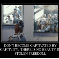 Memes, Freedom, and 🤖: DON'T BECOME CAPTIVATED BY  CAPTIVITY THERE IS NO BEAUTY IN  STOLEN FREEDOM