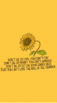 Love, Cool, and Wonder: DON'T BESO COOL YOU CAN'T CRY  DON t BE SO SMART YOU CAN'T WONDER  DON'T BE SO SET ON YOUR SUNNY DAYS  THAT YOU CAN'T LOVE THE ROLL OF THE TAUNDER