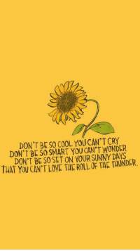 Love, Cool, and Wonder: DON'T BESO COOL YOU CAN'T CRY  DON'T BE SO SMART YOU CAN'T WONDER  DON'T BE S0 SET ON YOUR SUNNY DAYS  THAT YOU CAN'T LOVE THE ROLL OF THE TAUNDER