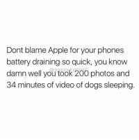 Apple, Bailey Jay, and Dogs: Dont blame Apple for your phones  battery draining so quick, you know  damn well you took 200 photos and  34 minutes of video of dogs sleeping Amen for @dogpartying enlightening us on phone battery issues. Via @dogpartying