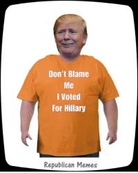 I Voted Meme: Don't Blame  Me  I Voted  For Hillary  Republican Memes