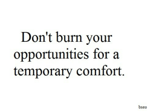 Opportunities: Don't burn your  opportunities for a  temporary comfort.  bseo