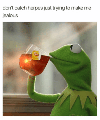 Herpes, Jealous, and Dank Memes: don't catch herpes just trying to make me  jealous No Worries.. ☕️🐸