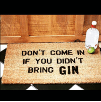 No alcohol 🚫 no entry goodgirlwithbadthoughts 💅🏻: DONT COME IN  IF YOU DIDN T  BRING GIN No alcohol 🚫 no entry goodgirlwithbadthoughts 💅🏻
