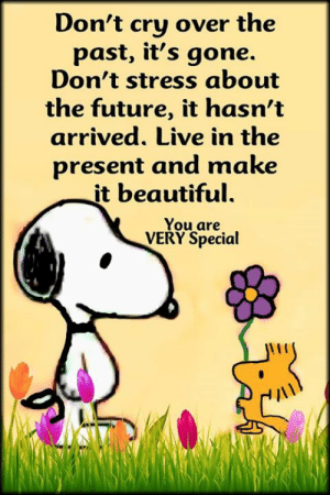 Live in the present <3: Don't cry over the  past, it's gone.  Don't stress about  the future, it hasn't  arrived. Live in the  present and make  it beautiful.  You are  VERY Special Live in the present <3