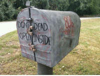 I would so have this as my mailbox, anyone else?? ~Jen: DONT DEAD I would so have this as my mailbox, anyone else?? ~Jen