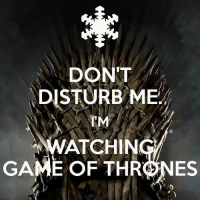 Hbo, Memes, and Game: DONT  DISTURB ME  IM  ATCHIN  GAME OF THRNES Me on Sunday nights . . . . . . . . . thronesmemes gameofthrones asoiaf got hbo gameofthronesfamily gameofthronesfan gameofthronesmemes gotmemes gots7 winterishere gameofthronesseason7 gotseason7