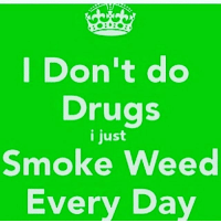 Don T Do Drugs: Don't do  Drugs  i just  Smoke Weed  Every Day