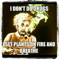 Don T Do Drugs: DON'T DO DRUGS  SET PLANTS ON FIRE AND  BREATHE