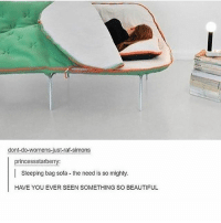 Beautiful, Memes, and Tumblr: dont-do-womens-just-raf-simons  princessstarberry:  Sleeping bag sofa the need is so mighty.  HAVE YOU EVER SEEN SOMETHING SO BEAUTIFUL Ahaaa 😁😂🤣, have you? Follow for more tumblr and textposts!!!