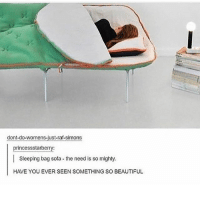 Beautiful, Memes, and Sleeping: dont-do-womens-just-raf-simons  princessstarberry  Sleeping bag sofa the need is so mighty.  HAVE YOU EVER SEEN SOMETHING SO BEAUTIFUL