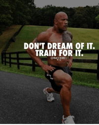 Memes, Train, and All The: DON'T DREAM OF IT.  TRAIN FOR IT.  @SUCCESSES Make it happen, cut out all the excuses. successes