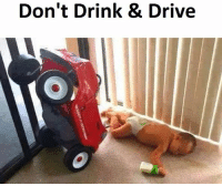 Memes, Drive, and 🤖: Don't Drink & Drive