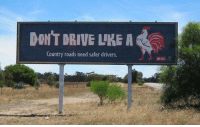 country road: DONT DRIVE LIKE A  Country roads need safer drivers.  MAC