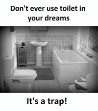 Memes, Trap, and Trapping: Don't ever use toilet in  your dreams  It's a trap!