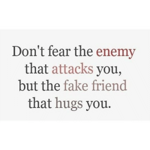 Fake, Fear, and Net: Don't fear the enemy  that attacks you,  but the fake friend  that hugs you. https://iglovequotes.net/