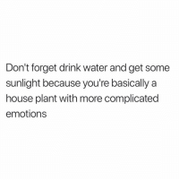 Anxiety, House, and Water: Don't forget drink water and get some  sunlight because you're basically a  house plant with more complicated  emotions A plant but with anxiety