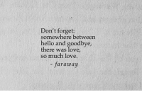 so much love: Don't forget:  somewhere between  hello and goodbye,  there was love,  so much love.  - faraway