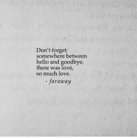 so much love: Don't forget:  somewhere between  hello and goodbye,  there was love,  so much love.  faraway