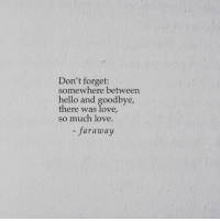 goodbye: Don't forget:  somewhere between  hello and goodbye,  there was love,  so much love.  faraway