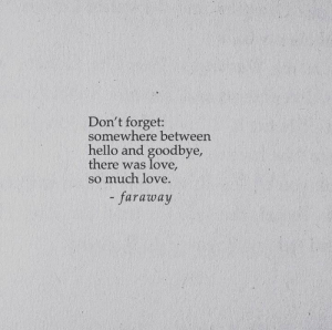 Hello, Love, and Somewhere: Don't forget:  somewhere between  hello and goodbye  there was love  so much love  - faraway
