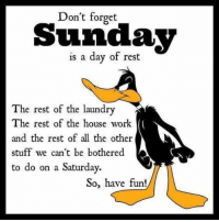 Dank, Laundry, and Work: Don't forget  Sunclajy  is a day of rest  The rest of the laundry  The rest of the house work  and the rest of all the other  stuff we can't be bothered  to do on a Saturday.  So, have fun! #jussayin