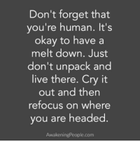 Memes, 🤖, and Awakening: Don't forget that  you're human. It's  okay to have a  melt down. Just  don't unpack and  live there. Cry it  out and then  refocus on where  you are headed  Awakening People.com Remember, you are not your emotions. 📷 @awakeningpeople