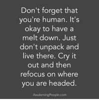 Memes, 🤖, and Awakening: Don't forget that  you're human. It's  okay to have a  melt down. Just  don't unpack and  live there. Cry it  out and then  refocus on where  ou are headed  Awakening People.com Good one @awakeningpeople