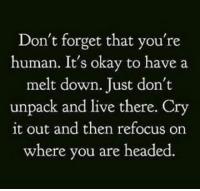 Memes, 🤖, and Forgeted: Don't forget that you're  human. It's okay to have a  melt down. Just don't  unpack and live there. Cry  it out and then refocus on  where you are headed.