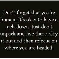 Live, Okay, and Girl Memes: Don't forget that you're  human. It's okay to have a  melt down. Just don't  unpack and live there. Cry  it out and then refocus on  where you are headed Never forget it ✌🏼