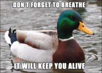 The quality advice you can expect from the Actual Advice Mallard meme these days.: DONT FORGET TO BREATHE  E IT WILL KEEP YOU ALIVE The quality advice you can expect from the Actual Advice Mallard meme these days.