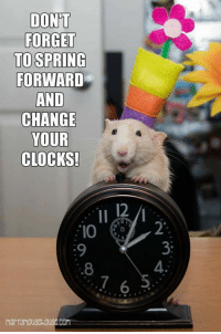 DONT  FORGET  TO SPRING  FORWARD  AND  CHANGE  YOUR  CLOCKS! For those ob you dat lib in the United Kingdom, don't forget to disrupt your space time fabrics tonight!