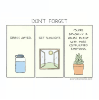 """<p>Good reminders for the day</p>  Artist: <a href=""""http://www.poorlydrawnlines.com"""">www.poorlydrawnlines.com</a>: DON'T FORGET  YOU'RE  BASICALLY A  DRINK WATER.  GET SUNLIGHT. 