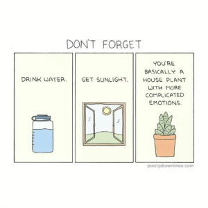 Good reminders for the day: DON'T FORGET  YOU'RE  BASICALLY A  DRINK WATER.  GET SUNLIGHT. |/ HOUSE PLANT  WITH MORE  COMPLICATED  EMOTIONS  poorlydrawnlines.com Good reminders for the day