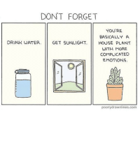 Memes, Anxiety, and Appreciate: DON'T FORGET  YOU'RE  BASICALLY A  DRINK WATER. GET SUNLIGHT HOUSE PLANT  WITH MORE  COMPLICATED  EMOTIONS  poorlydrawnlines.com (artist: @poorlydrawnlines) my friend keeps asking me to hang out n i appreciate it n all but... i have Anxiety®︎ and really don't wanna ;__;