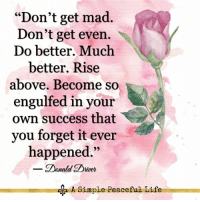 """Life, Memes, and Mad: """"Don't get mad.  Don't get even.  Do better. Much  better. Rise  above. Become so  engulfed in your  own success that  you forget it ever  happened.""""  Donald Driver  A Simple Peaceful Life <3"""