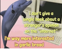"Internet, The Internet, and Bread: dont give a  ingle heckabouta  str  anger's opinion  on the ""internet  m way more interested  ncarlic bread"