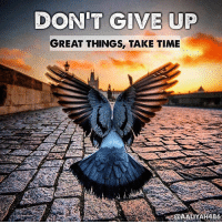 "Memes, Paradise, and Messenger: DON'T GIVE UP  GREAT THINGS, TAKE TIME ""One of the Salaf said: 'When I am afflicted with calamity, I praise Allah four times: I praise Allah for it not being worse than it is. I praise Allah for nourishing me with the ability to bear it patiently. I praise Him for granting me the accord to say: 'To Allah we belong and to Him we return.' And I praise Him for not making the tribulation in my religion.' - Looking to relief through patience is an act of worship since tribulation never remains forever. Patiently bear every calamity, take heart, Know that harm never endures forever. Be patient, just as the nobles were patient: It is a fleeting event, here today, gone tomorrow."" (Ibn Qayyim al-Jawziyyah, Heartfelt Advice To A Friend) - ""Anas b. Malik reported that Allah's Messenger (ﷺ) said that one amongst the inhabitants of Hell who had led a life of ease and plenty amongst the people of the world would be made to dip in Fire only once on the Day of Resurrection and then it would be said to him: - 'O, son of Adam, did you find any comfort, did you happen to get any material blessing?' - He would say: 'By Allah, no, my Lord.' - And then that person from amongst the persons of the world be brought who had led the most miserable life (in the world) from amongst the inmates of Paradise. and he would be made to dip once in Paradise and it would be said to him: - 'O, son of Adam, did you face, any hardship? Or had any distress fallen to your lot?' - And he would say: 'By Allah, no, O my Lord, never did I face any hardship or experience any distress.'"" (Muslim 2807)"