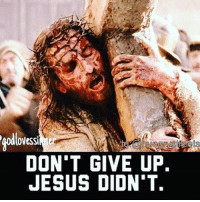 👉CHECK THE LINK IN OUR BIO🙏Our mission is to help the homeless and hungry, to provide food & clothing to all in need 🙏May God bless them. TAG a friend and don't forget to FOLLOW US. www.hungrystreets.com-help ❤️CHECK THE LINK IN OUR BIO. god jesus hungrystreets bible Homeless christianity christians pray lord christ salvation praise worship motivationalquotes saved jesuschrist London Newyork losangeles: DON'T GIVE UP.  JESUS DIDNT. 👉CHECK THE LINK IN OUR BIO🙏Our mission is to help the homeless and hungry, to provide food & clothing to all in need 🙏May God bless them. TAG a friend and don't forget to FOLLOW US. www.hungrystreets.com-help ❤️CHECK THE LINK IN OUR BIO. god jesus hungrystreets bible Homeless christianity christians pray lord christ salvation praise worship motivationalquotes saved jesuschrist London Newyork losangeles
