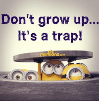 Growing Up, Memes, and Trap: Don't grow up...  It's a trap!  mennions.com