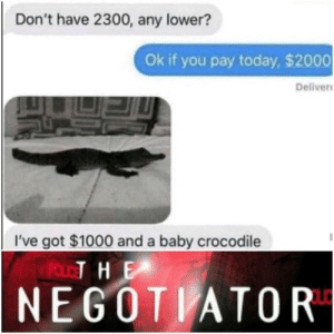 Today, Baby, and How: Don't have 2300, any lower?  Ok if you pay today, $2000  Deliver  I've got $1000 and a baby crocodile  POLOT HE  NEGOTIATOR Thats how a quality bergain looks like