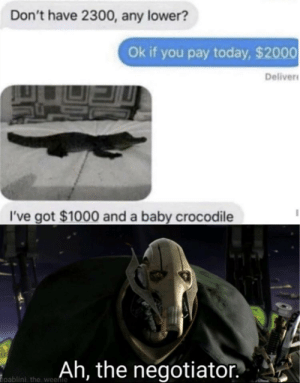 Me irl: Don't have 2300, any lower?  Ok if you pay today, $2000  Deliver  I've got $1000 and a baby crocodile  Ah, the negotiator  pablini the weenie Me irl