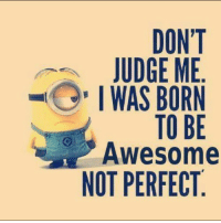 Lebanesememes follow lebanese memes lebanon instagram instagood instagreat photography laughs lol EPIC: DON'T  JUDGE ME  I WAS BORN  TO BE  Awesome  NOT PERFECT Lebanesememes follow lebanese memes lebanon instagram instagood instagreat photography laughs lol EPIC