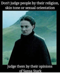 Facts, Memes, and Sansa Stark: Don't judge people by their religion,  skin tone or sexual orientation  judge them by their opinions  of Sansa Stark Facts 💯 do you like her? 👀