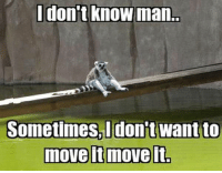 Memes, 🤖, and Man: don't know man.  Sometimes don't want to  move it move it We have all had those days