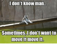 We have all had those days: don't know man.  Sometimes I don't want to  move it move it We have all had those days