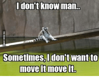Dank, 🤖, and Move: don't know man.  Sometimes I don't want to  move it move it We have all had those days http://9gag.com/gag/a2N9x2D?ref=fbp